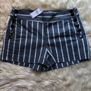 Ann Taylor LOFT NWT grey/blue pinstripe shorts